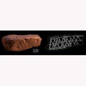 De tidligste menneskers udsmykning