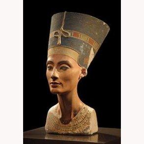Nefertitis grav